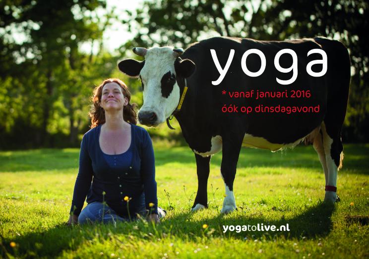 Yoga to live Amersfoort Hoogland